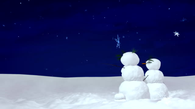 Christmas snowman pair at night video