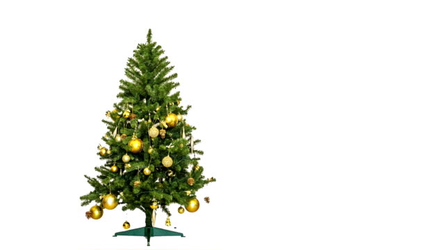 weihnachtsbaum-animation - christmas tree stock-videos und b-roll-filmmaterial