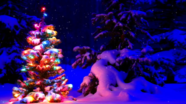 Christmas tree glowing outdoors in a snowy forest video