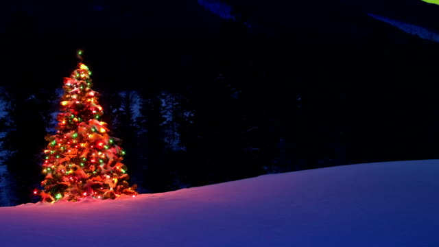 Christmas tree glowing outdoors Under the Northern Lights video