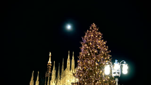 christmas tree in front of milan cathedral, duomo square in milan, italy night view - gothic fashion stock videos and b-roll footage