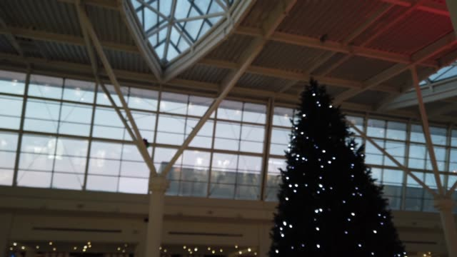 Christmas tree in the mall.