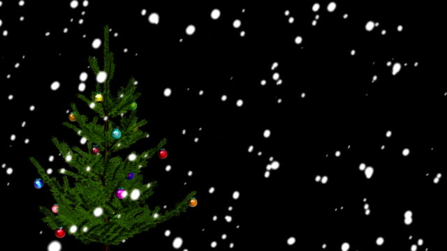 Christmas Tree On Black Background with place for your text video