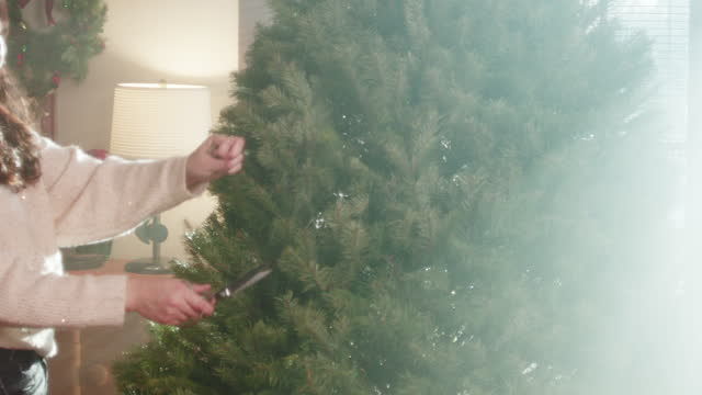 Christmas Tree Trimming And Set Up 4K 48FPS SLO-MO