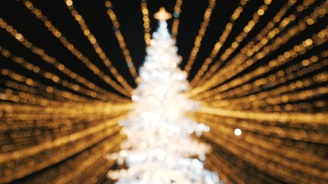 クリスマス ツリー。 - 十二月点の映像素材/bロール