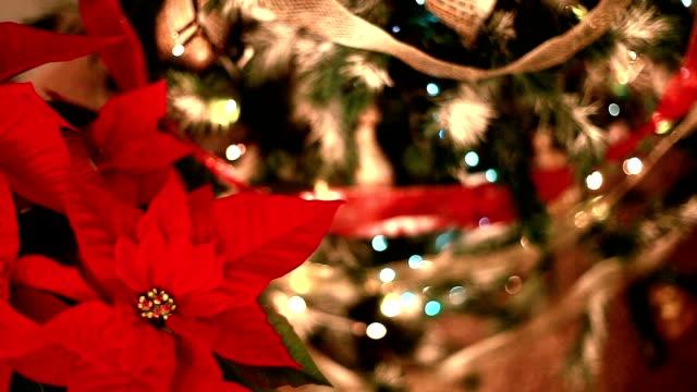 Christmas tree. video