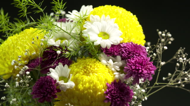 Chrysanthemum flower bouquet rotating close-up