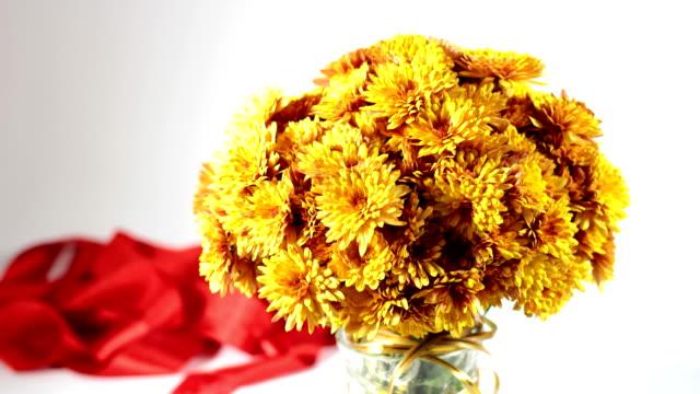 chrysanthemum video