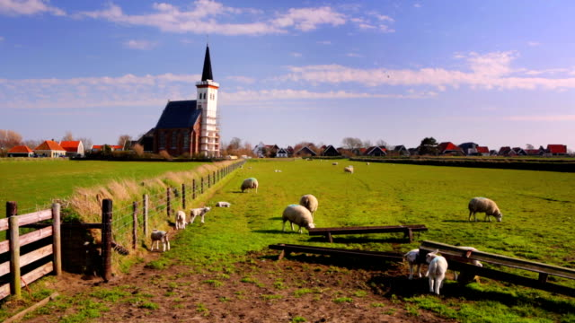 Church of Den Hoorn on Texel island in The Netherlands video