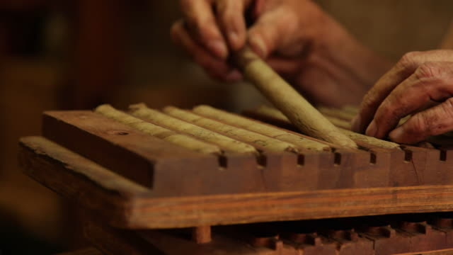 cigar maker at work - puro stok videoları ve detay görüntü çekimi