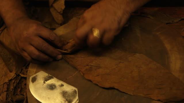 cigar maker video