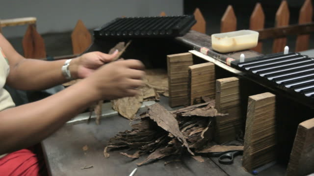 Cigar Production (Handmade) - 01 video