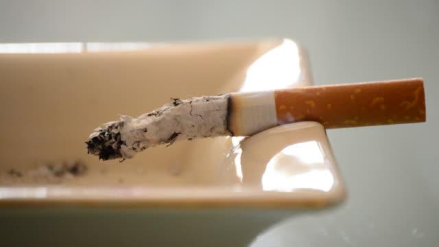Cigar tobacco burning in ashtray video