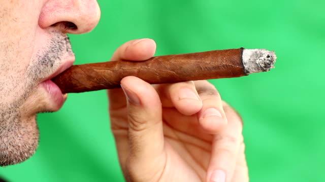 cigar - teurer lebensstil stock-videos und b-roll-filmmaterial