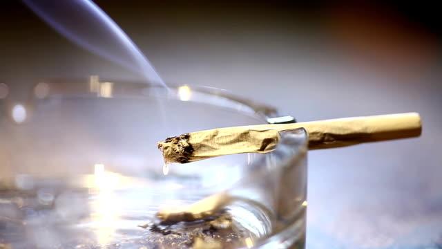 küllük sigara - nikotin stok videoları ve detay görüntü çekimi
