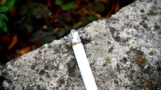 cigarette, slow motion smoke - nikotin stok videoları ve detay görüntü çekimi