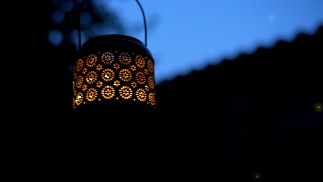 cinemagraph - lantern  with magical lights of fireflies at night  . - lanterna attrezzatura per illuminazione video stock e b–roll