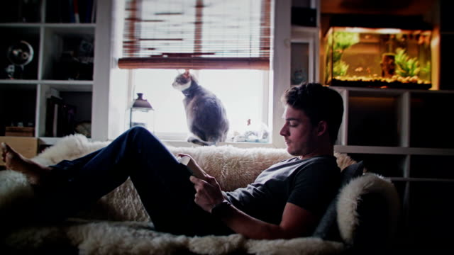 cinemagraph (foto-movimento) di un giovane adulto rilassarsi leggendo un libro - gente serena video stock e b–roll