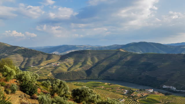 Cinemagraph of Douro valley at sunset 4K UHD Timelapse video of Douro valley during sunset from the Casal de Loivos viewpoint near Pinhão, Portugal. portugal stock videos & royalty-free footage