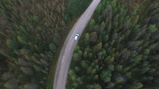 Cinematic drone shot of winding country road in the woods. Aerial view from above of car driving in the forest