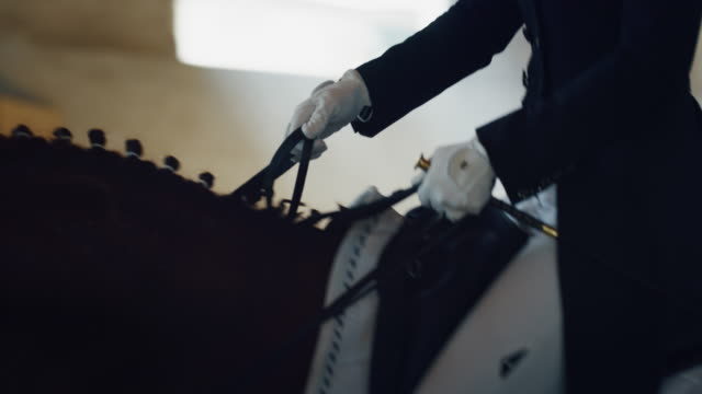 cinematic slow motion close up of young female horsemanship master dressed in a professional apparel is practising exercises for competition of horse racing and dressage on a riding hall - sella video stock e b–roll