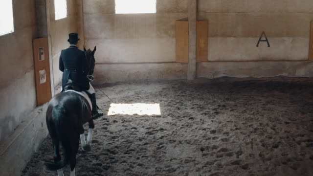 Cinematic slow motion of young male horsemanship master dressed in a professional apparel is practising exercises for competition of horse racing and dressage on a riding hall