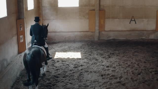 filmisk slow motion av unga manliga horsemanship mästare klädd i en professionell kläder utövar övningar för konkurrens av hästkapplöpning och dressyr på en ridsal - häst tävling bildbanksvideor och videomaterial från bakom kulisserna