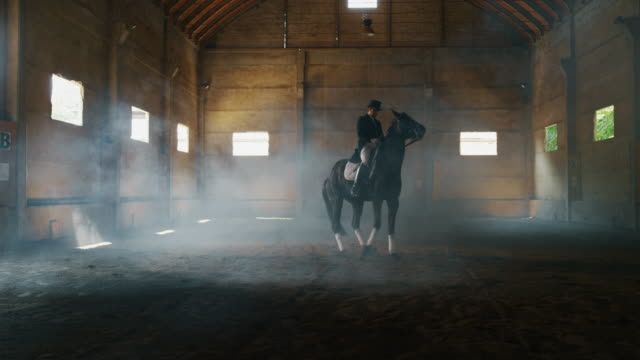cinematic slow motion of young male horsemanship master dressed in a professional apparel is practising exercises for competition of horse racing and dressage on a riding hall - скаковая лошадь стоковые видео и кадры b-roll