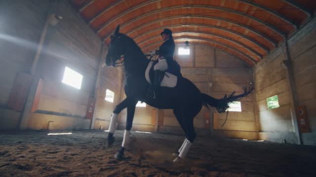 cinematic zeitlupe des jungen männlichen reitmeisters in professioneller kleidung übt übungen für den wettbewerb von pferderennen und dressur auf einer reithalle - hengst stock-videos und b-roll-filmmaterial