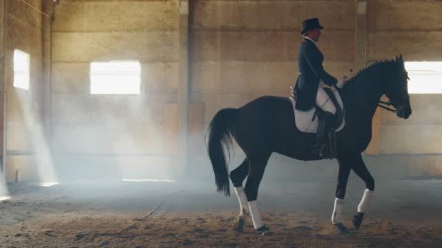 vidéos et rushes de le ralenti cinématographique du jeune maître d'équitation masculin rectifié dans un vêtement professionnel pratique des exercices pour la concurrence des courses de cheval et du dressage sur une salle d'équitation - dressage équestre