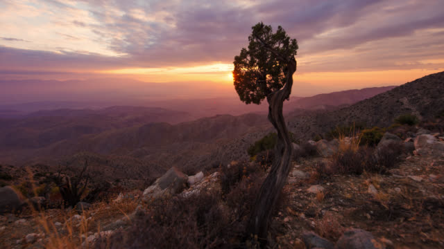 cinematic sunset time-lapse overlooking desert valley far below - parco nazionale video stock e b–roll