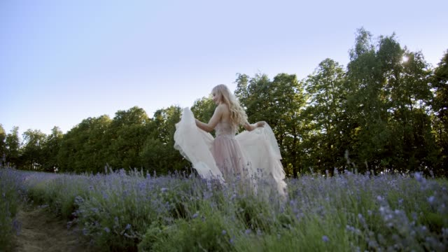 Cinematic View of Woman walking from Colorful Lavender Fields on a Sunny Day Blooming Purple Flowers. V3
