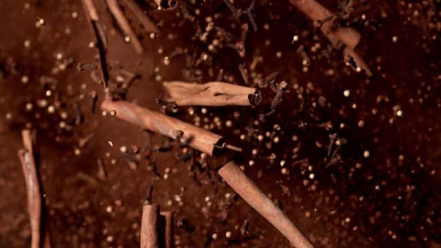 Cinnamon pieces and cloves falling down Spices falling down. Super slow motion. Close up. Camera trajectory control by fast robot arm. spice stock videos & royalty-free footage