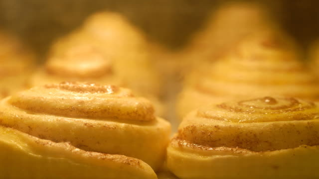 Cinnamon rolls baking (timelapse) video