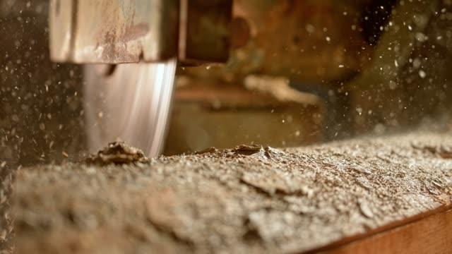 circular saw cutting a log - drewno tworzywo filmów i materiałów b-roll