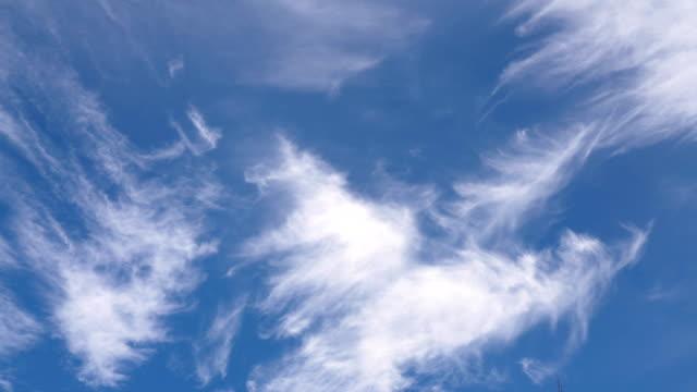 cirruswolken am blauen himmel. - zirrus stock-videos und b-roll-filmmaterial