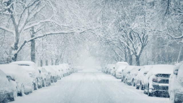 city avenue med bilar begravda i snowstorm - stationär bildbanksvideor och videomaterial från bakom kulisserna