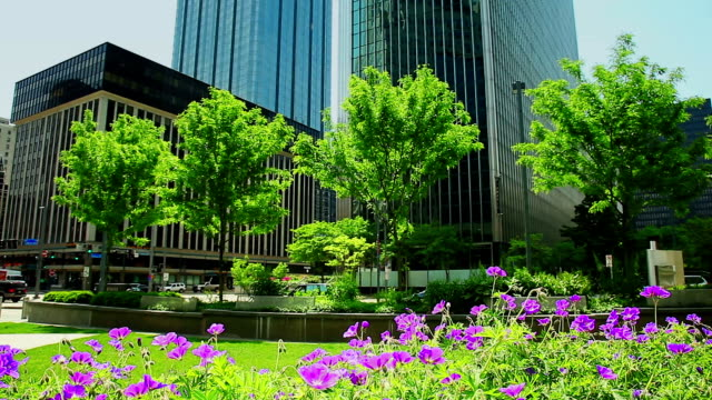 City life office buildings and park  background City life office buildings and park  background office park stock videos & royalty-free footage