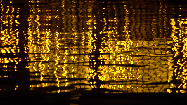 City lights reflections video