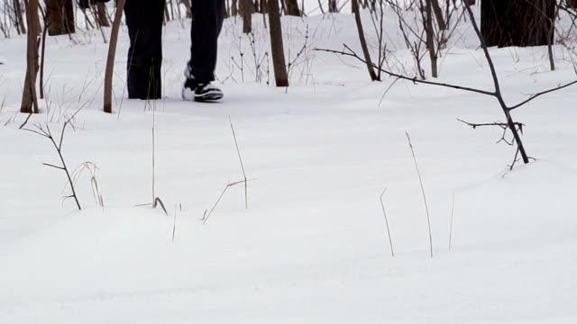 City Man Walking in Deep Snow in the Woods video
