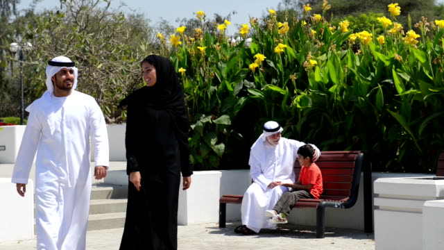 City park in UAE video