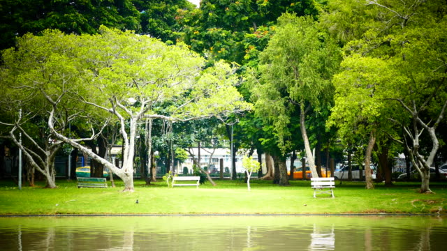 City parks in Thailand video