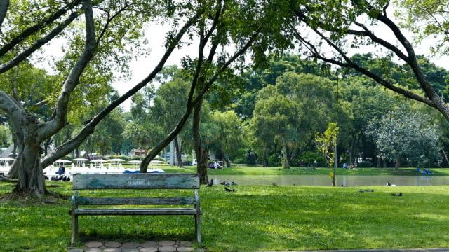 City parks video