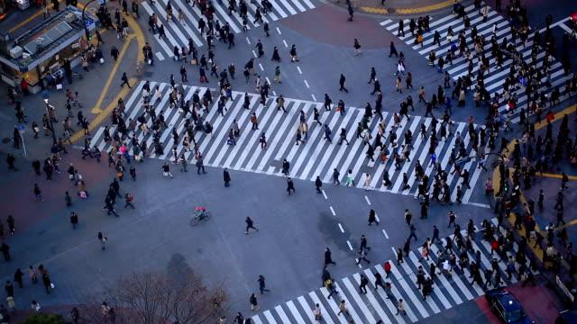 stockvideo's en b-roll-footage met city pedestrian traffic shibuya tokyo - tokio kanto