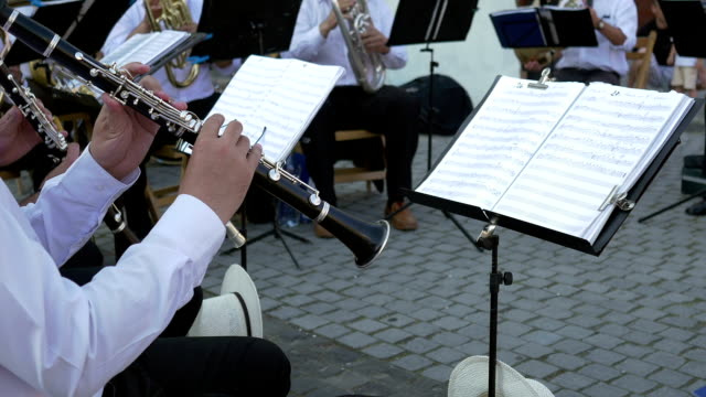 Clarinet Musician Performs with Band video