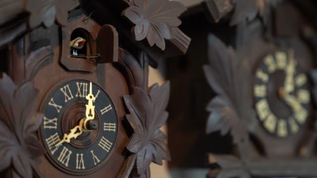 4k klasik vintage duvar saati, her saat kuşlar zaman söylemek için bir cıvıltı yapacak. - süslü püslü stok videoları ve detay görüntü çekimi