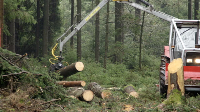 CLOSE UP: Claw on swing arm lifting tree trunk and loading it to the tractor video