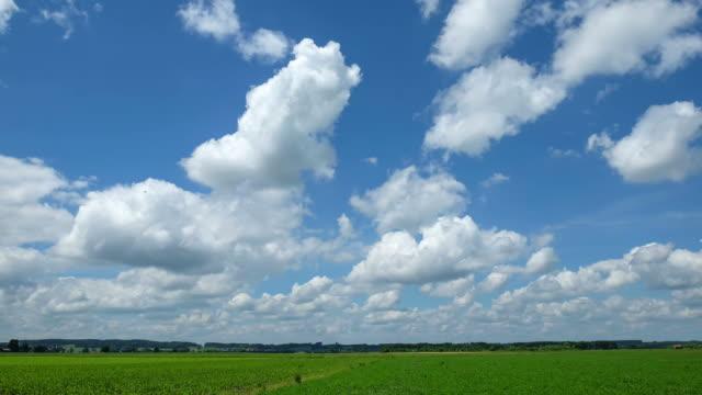 Clean cloud, blue sky video