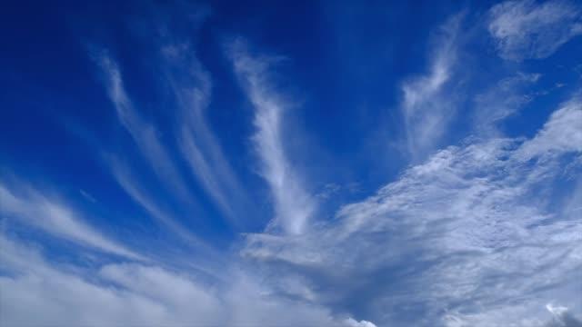 vídeos de stock, filmes e b-roll de limpar nuvem, um céu azul - cirro
