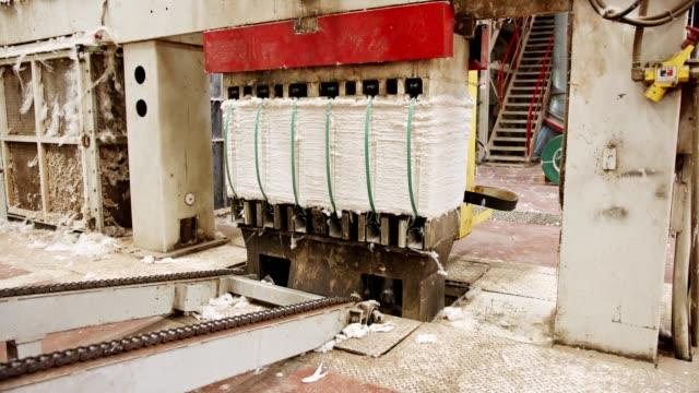 rengör bomull balar komprimerade efter separation i en industriell bomull gin - cotton growing bildbanksvideor och videomaterial från bakom kulisserna